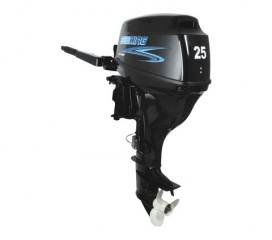 SEAKING SF25 BWS (25.0 AG)