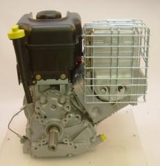 BRIGGS & STRATTON 1450 Intek OHV (10 AG)