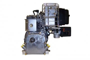 BRIGGS & STRATTON 525 series (3.5 AG)