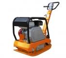 PCP170-GX270 (170 kg; Su reversu)
