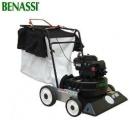 BENASSI AF 100 (70 cm; 5.5 AG)