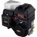 BRIGGS & STRATTON series 800 (5.5 AG)